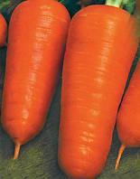 Семена моркови Шантане. Упаковка 0,5 кг. Производитель Clause