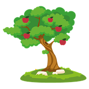 Літні сорти яблунь