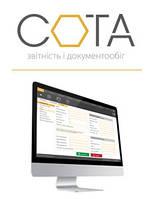 Веб-сервис «СОТА», Юр.лицо на общей системе налогообложения