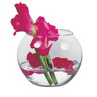 Круглая ваза аквариум Flora d-8 см