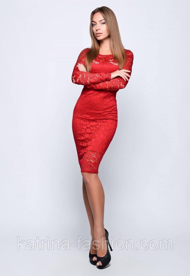 Женское стильное кружевное платье  - KATRINA FASHION - оптовый интернет-магазин женской одежды  в Харькове