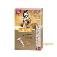 Advocate (Адвокат) капли на холку от блох и клещей для собак от 10 до 25 кг, 1 пип. по 2,5 мл, Bayer