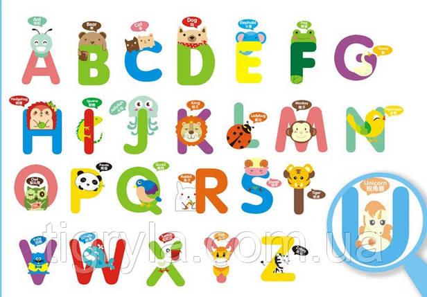 Інтер'єрна наклейка в дитячу кімнату Англійський Алфавіт тваринки, фото 2