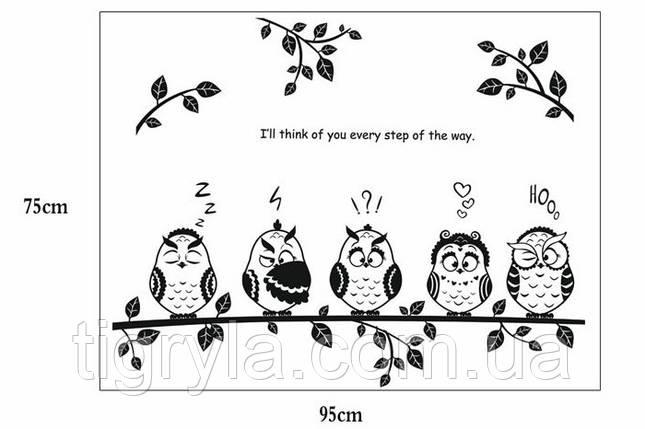 Интерьерная наклейка на стену Совы , фото 2