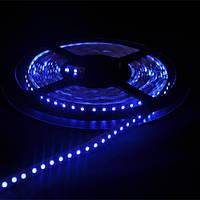 Светодиодная лента SMD 3528, 120 диодов/м, 12V, 9.6W/m, 9lm, IP20, негерметичная, 5 метров, синяя