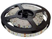 Светодиодная лента 24V  S-TECH  SMD5050  МТК-300WF5050-24