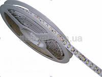 Светодиодная лента 12V  S-TECH  SMD3528  MTK-600WF3528-12