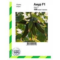 Семена огурца Амур F1 (Бейо / Bejo/ АГРОПАК+) 100 семян - партенокарпик, ультра-ранний гибрид (40-45 дней)