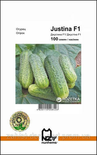 Семена огурца Джустина F1 / Джастина F1 (Nunhems/АГРОПАК+) 100 сем - партенокарпик, ранний гибрид (45-50 дней)