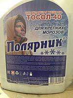 Тосол -40 Полярник 9кг