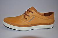 Кожаные мужские спортивные туфли Timberland 42