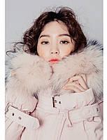 2016, Новый Южный Корея действительно capensis мех мода большой меховой воротник пуховик женщин длинный абзац корейской версии утолщенные прилив, фото 1