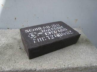 Сегмент шліф. бак. 14А 5C 100*40*150 F46 СМ-СТ