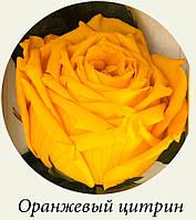 Живая роза FLORICH,не вянет до 3-5 лет, 7/36см !