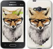 """Чехол на Samsung Galaxy Ace 4 G313 Лис в очках """"2707u-207"""""""