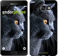 "Чехол на Samsung Galaxy A7 (2016) A710F Красивый кот ""3038u-121"""