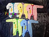 Человечек трикотажный (100% хлопок, интерлок) 62 р, цвет на выбор, фото 1