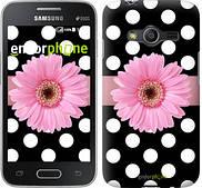 "Чехол на Samsung Galaxy Ace 4 G313 Горошек 2 ""2147u-207"""