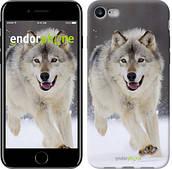 "Чехол на iPhone 7 Бегущий волк ""826c-336-2911"""