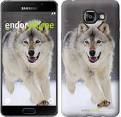 "Чехол на Samsung Galaxy A5 (2016) A510F Бегущий волк ""826c-158"""