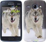 "Чехол на Samsung Galaxy Core i8262 Бегущий волк ""826c-88"""