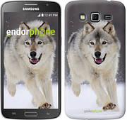 "Чехол на Samsung Galaxy Grand 2 G7102 Бегущий волк ""826c-41"""