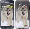 """Чехол на Samsung Galaxy J5 J500H Бегущий волк """"826c-100"""""""
