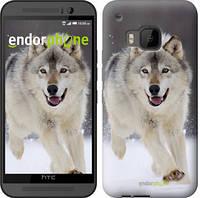 """Чехол на HTC One M9 Бегущий волк """"826u-129"""""""
