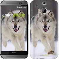 "Чехол на HTC One M8 Бегущий волк ""826c-30"""