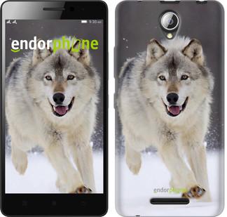 """Чехол на Lenovo A5000 Бегущий волк """"826u-119"""""""