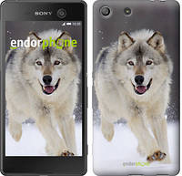 "Чехол на Sony Xperia M5 Бегущий волк ""826c-217"""