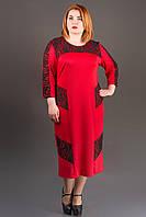 Платье Грация (красный) ниже колена с гипюром большого размера 54-60 батал