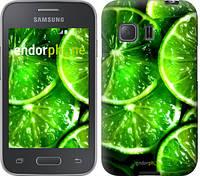 """Чехол на Samsung Galaxy Young 2 G130h Зелёные дольки лимона """"852u-206"""""""