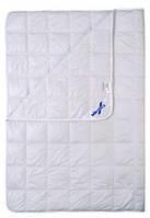 Одеяло Billerbeck Астра  стандартное зимнее полуторное 172*205