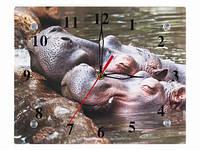 Часы настенные Бегемотики
