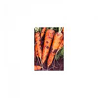 """Морковь Диаменто F1 (VAC 75 F1) 100 000 сем. калибр. """"Вилморин"""""""