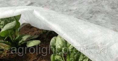 Агроволокно 23 г 15,8*100м польша, купить агроволокно недорого
