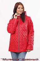 Стёганая женская куртка от украинского производителя.