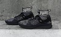 Женские кроссовки Puma Ignite evoKnit black, фото 1