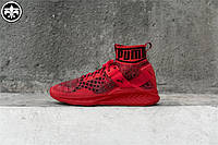 Женские кроссовки Puma Ignite evoKnit красные, фото 1