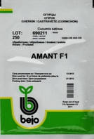 Семена огурца Амант F1 (Бейо / Bejo) 250 семян - партенокарпик, ультра-ранний гибрид (40-45 дней