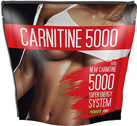 Power Pro Carnitine 5000 500g