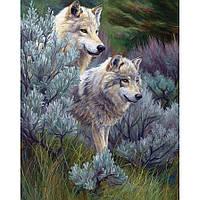 Картина по номерам - Пара волков