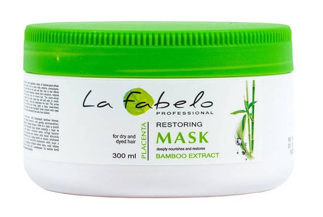 Маска La Fabelo Professional для сухих и окрашенных волос с экстрактом бамбука и пшеничной плацентой 300мл, фото 2