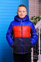 Куртка  демисезонная  для мальчика Бадди (т.синий-красный-электрик)