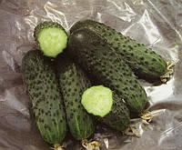 Огурец Сатина F1 10 семян, фото 1