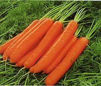 Морква Лагуна F1 1 грам, фото 1