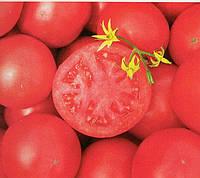 Томат розовоплодный Тарпан F1 1000 семян