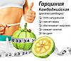"""Препарат для похудения """"Камбоджийская гарциния"""" порошок, фото 2"""
