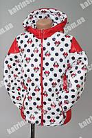"""Куртка весенняя для девочек """"Минни Маус"""" капюшон с ушками"""